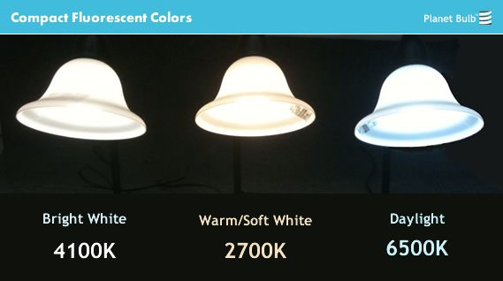 Daylight Vs Soft White Light Bulbs Google Search Cool Lighting Bulb Gold Light
