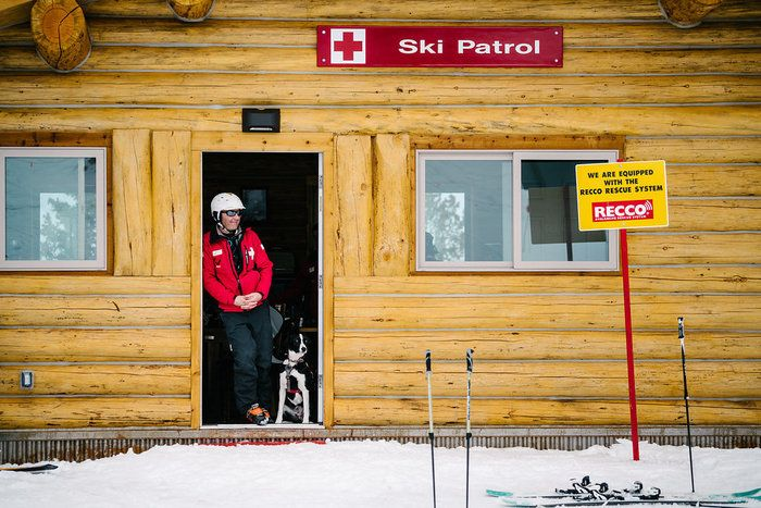 Ski Utah Powder Puppies The Making Of An Avalanche Dog Rescue