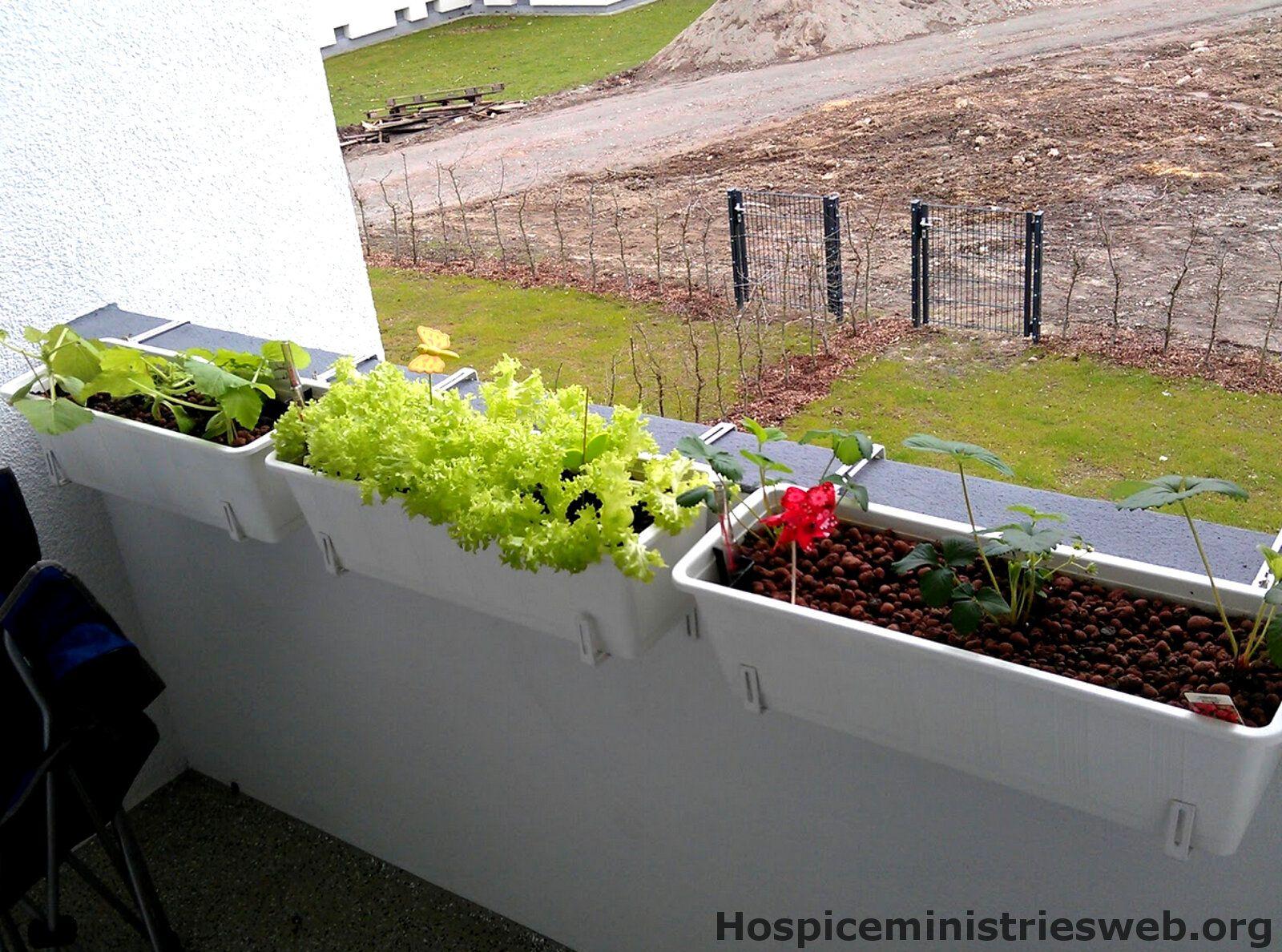 balkonk sten bepflanzen holz blumenk sten balkon selber bauen ideen garden plants und aquarium