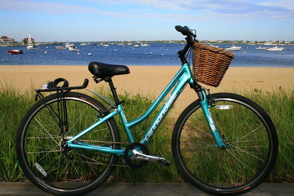 Bike Rentals Bike Rental Bicycle Pictures