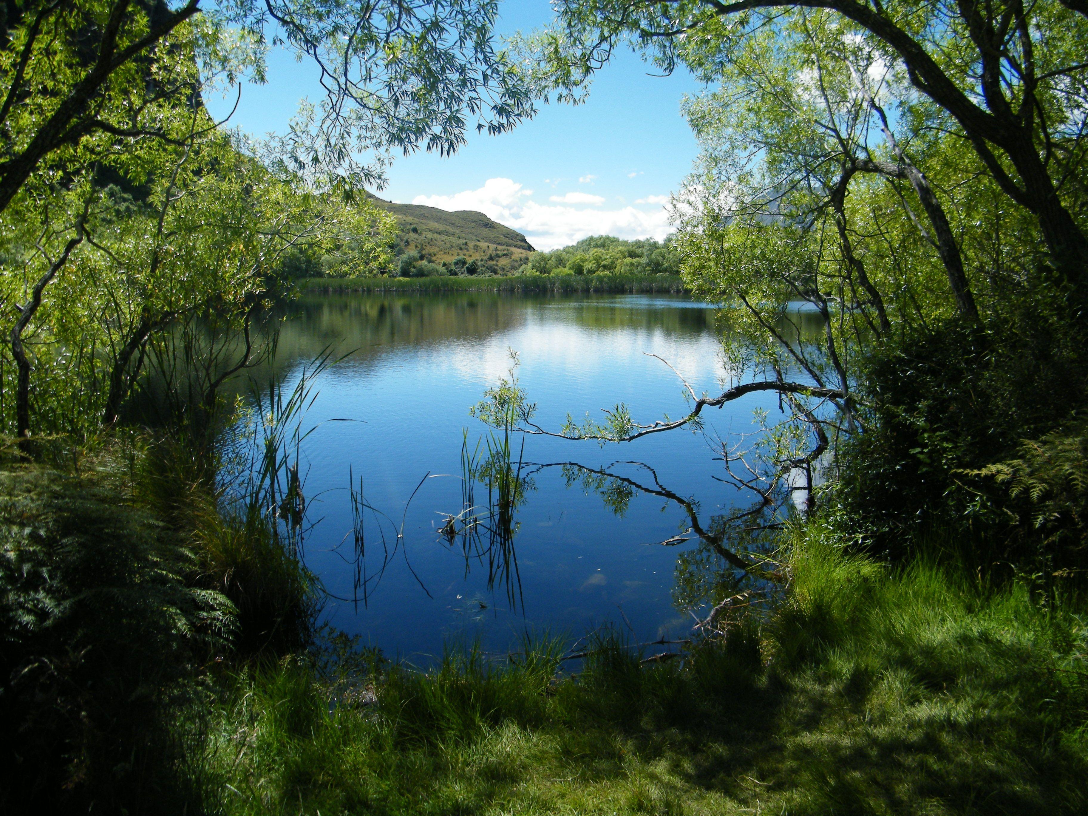 daimond lake new zealand