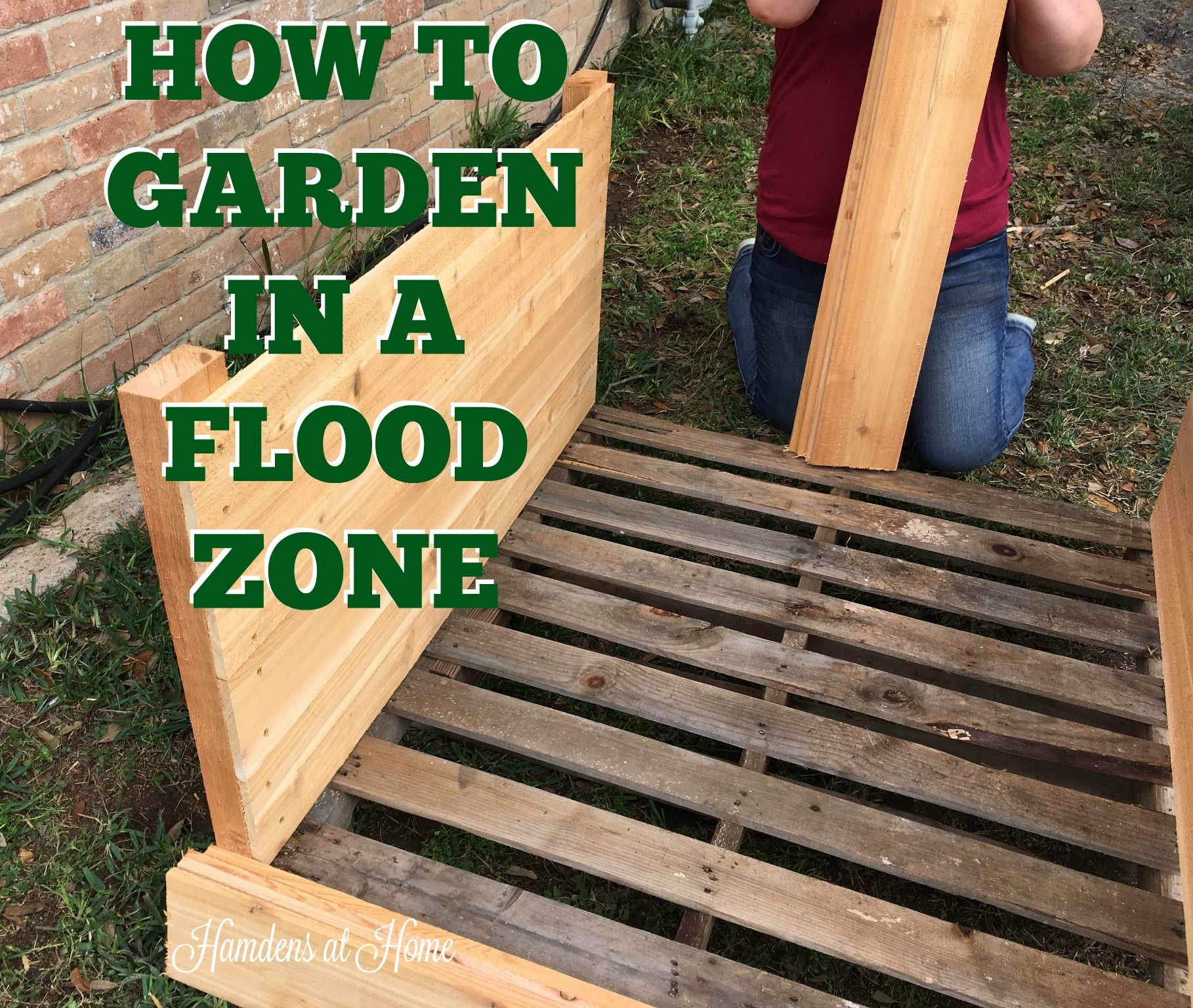 How To Garden In A Flood Zone (With Images