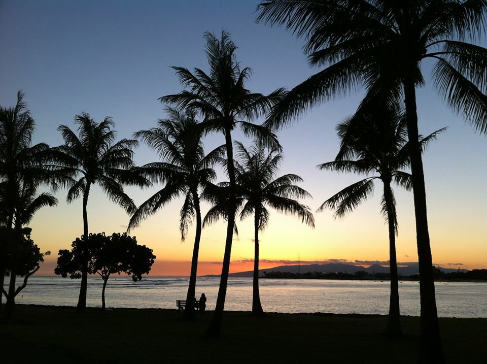 """Hawaii  From the """"Hawaii"""" facebook page 6-7-13    Enjoying the moment under the Oahu palm trees. —"""
