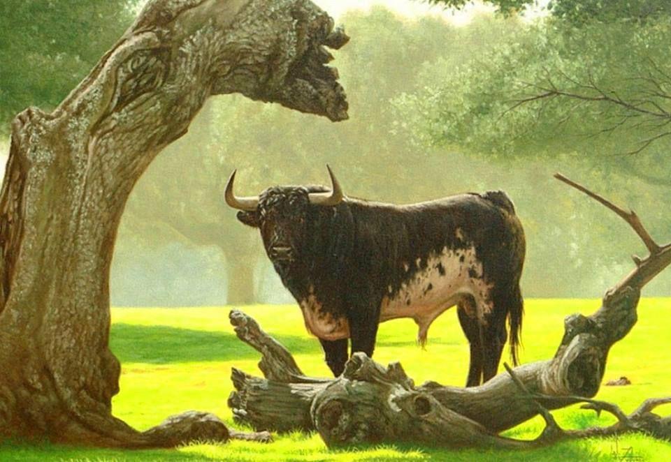 Animales Bellos del Mundo