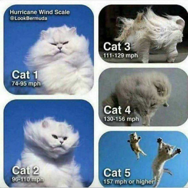 For those in TX Hurricane Wind Speed Scale Chart Cat 1 to 5