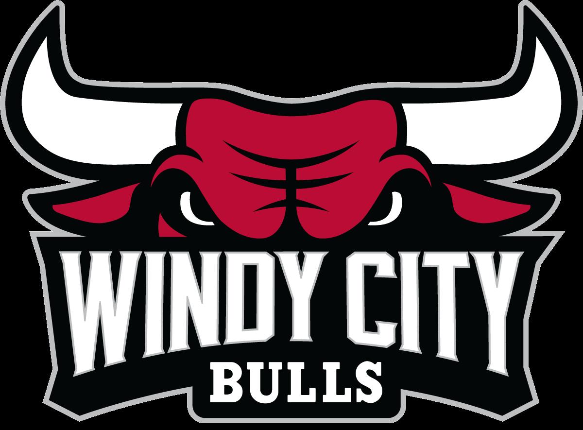 453b4bdb9dc Windy City Bulls Logo G League