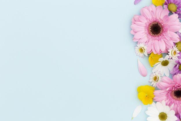 Moldura plana leiga floral com fundo azu... | Free Photo #Freepik #freephoto #quadro #floral #flores #natureza