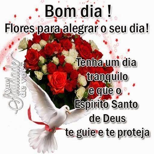 Que Saudade De Você Flores Para Bom Dia Boa Tarde Boa Noite
