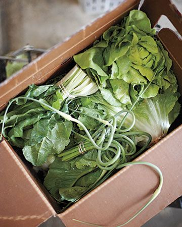 Here's a bumper crop of ideas for what to do with your CSA box, all growing season long -- and information on how to find farm-fresh produce near you.  i need this! getting rid of 80 lbs of greens and kohlrabi is impossible!