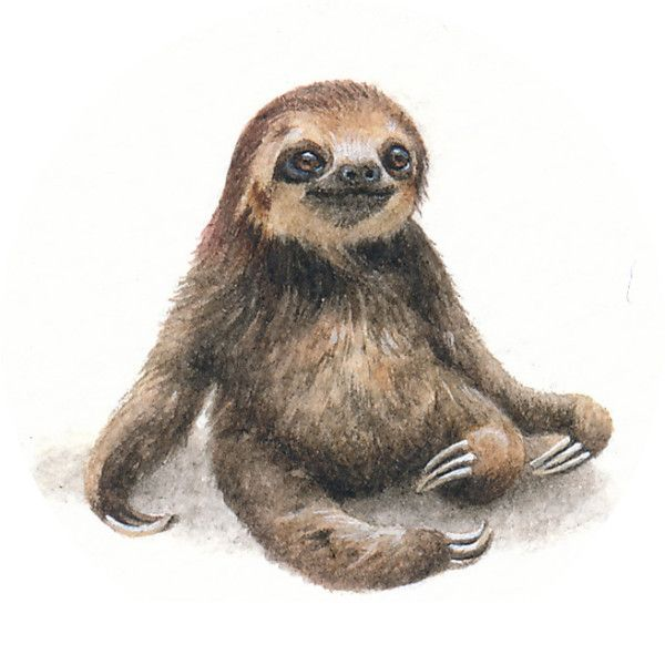 Day 3 100 25x24mm Timoteus The Sloth Fursdays1 Sloth Art