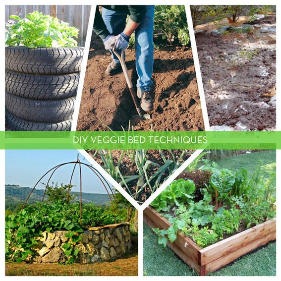 5 diy techniques for creating productive vegetable gardening beds - Vegetable Garden Ideas Diy