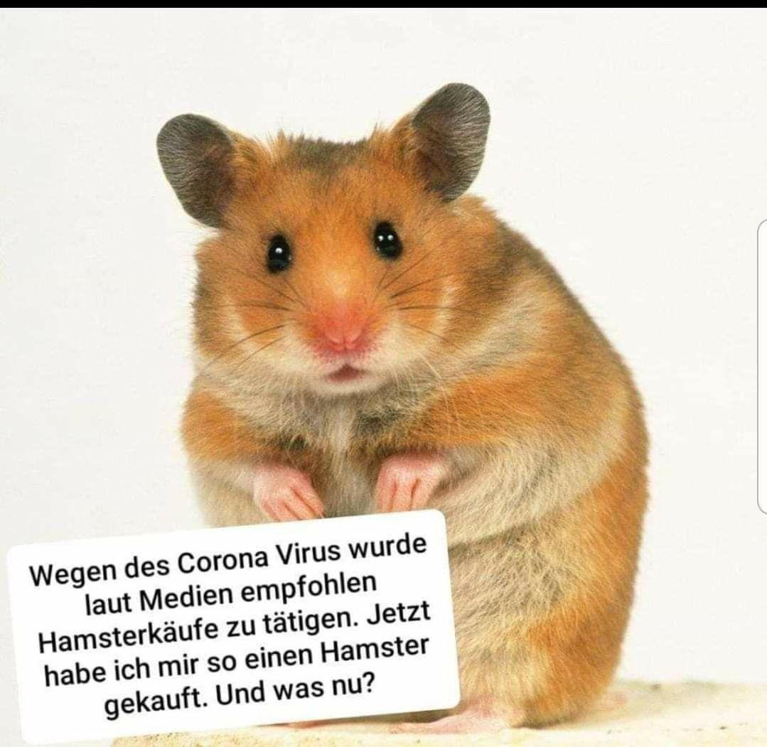 Lustiges über Corona