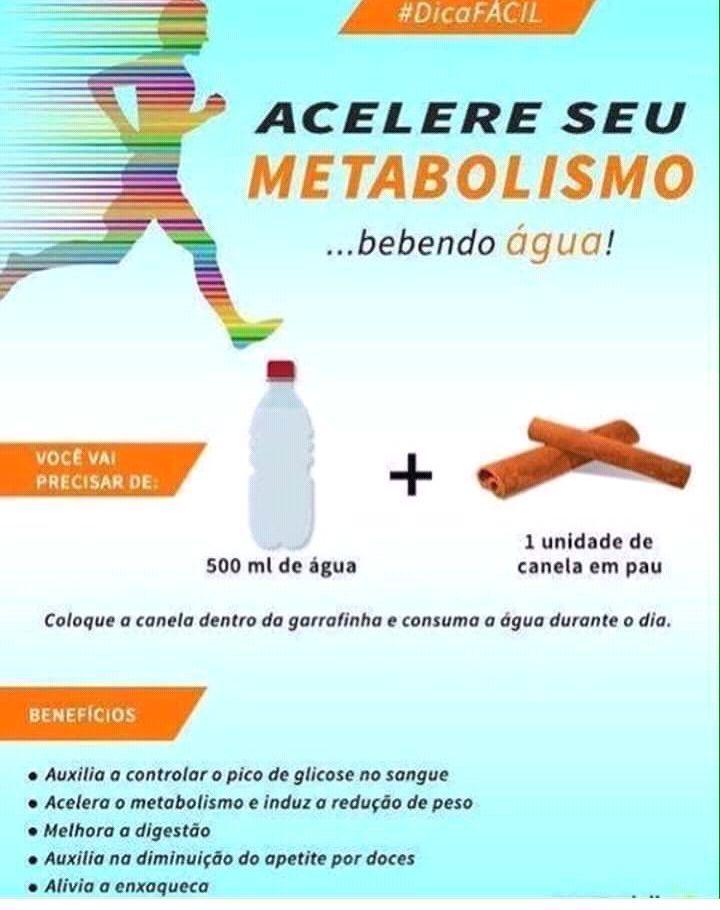 Alimentos Para Acelerar O Metabolismo E Queimar Gordura Com
