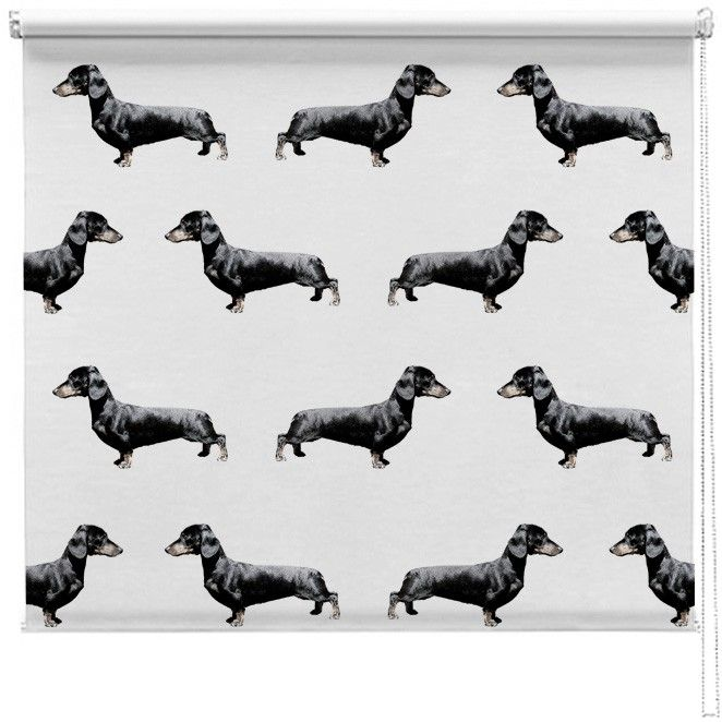 Dachshund Sausage Dog Pattern Blind Br P A Beautiful Made To Measure Personalised Printed Designer Roller Blind Pr Patterned Blinds Dog Pattern Sausage Dog