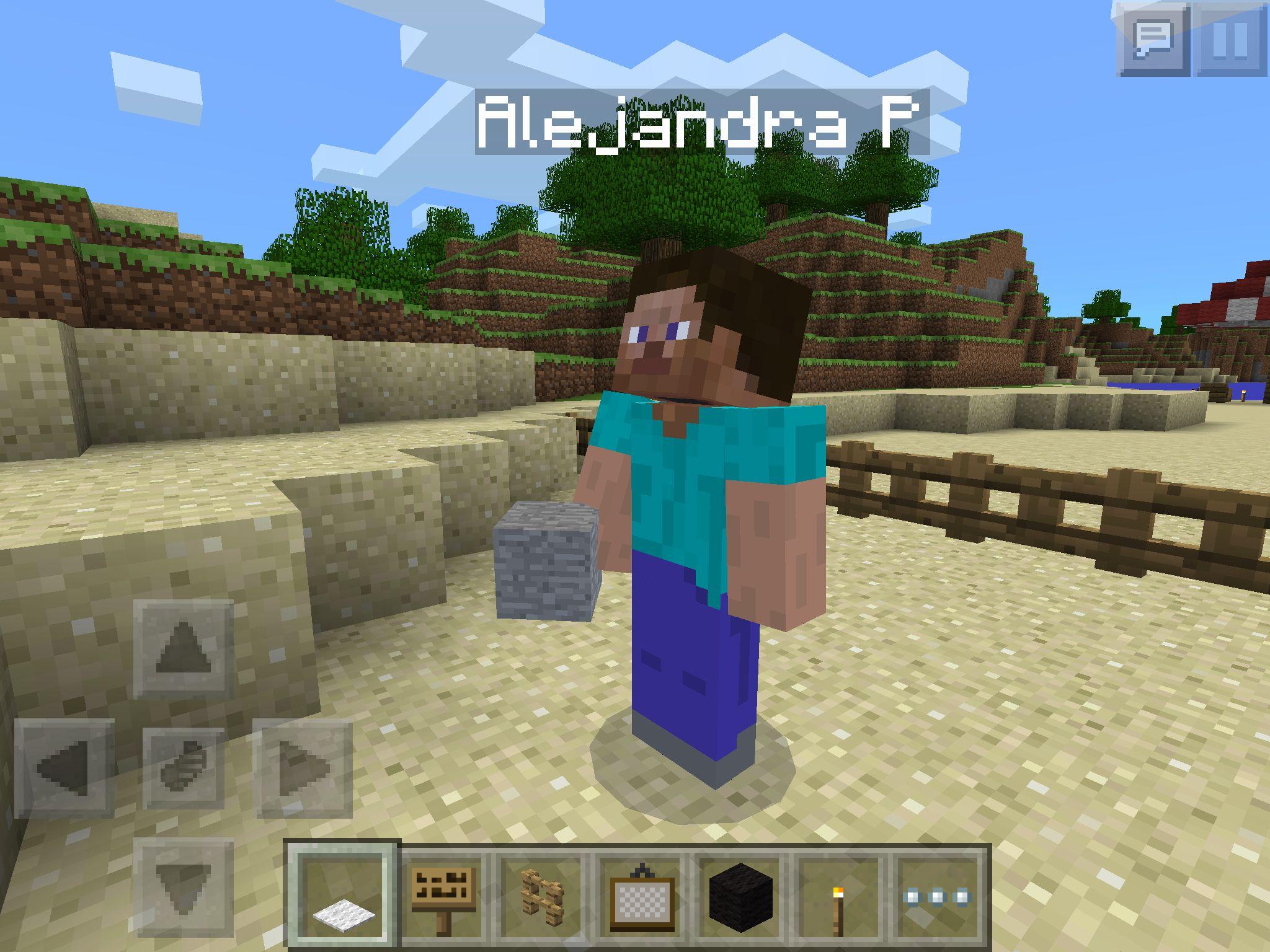 Playing Minecraft With My Friend Alejandra Perez How To Play