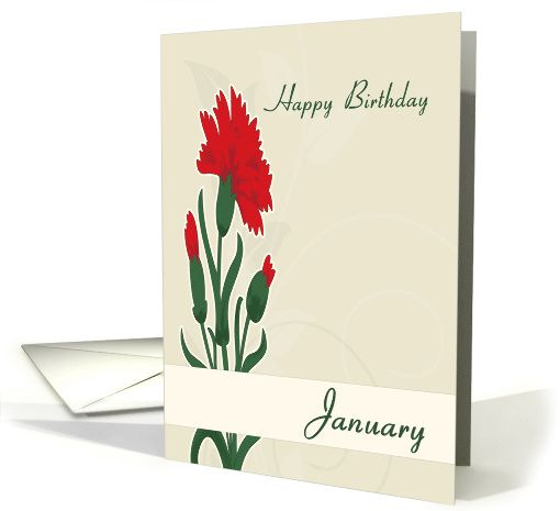 Carnation january birth flower for birthday card january birth carnation january birth flower for birthday card greetingcarduniversejjbdesigns greetingcard greetingcarduniverse greeting card m4hsunfo