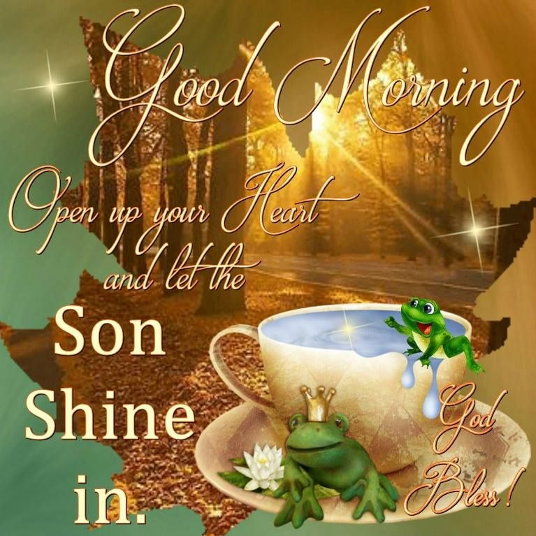 Good Morning Everyone, Happy Monday. I pray that you have