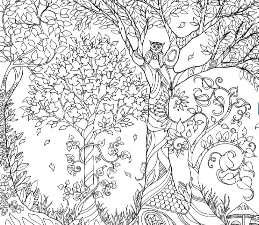 Secret Garden Coloring Book Free Pages Books Colouring Gardens Retreat Ideas Gel Pens Johanna Basford Colour