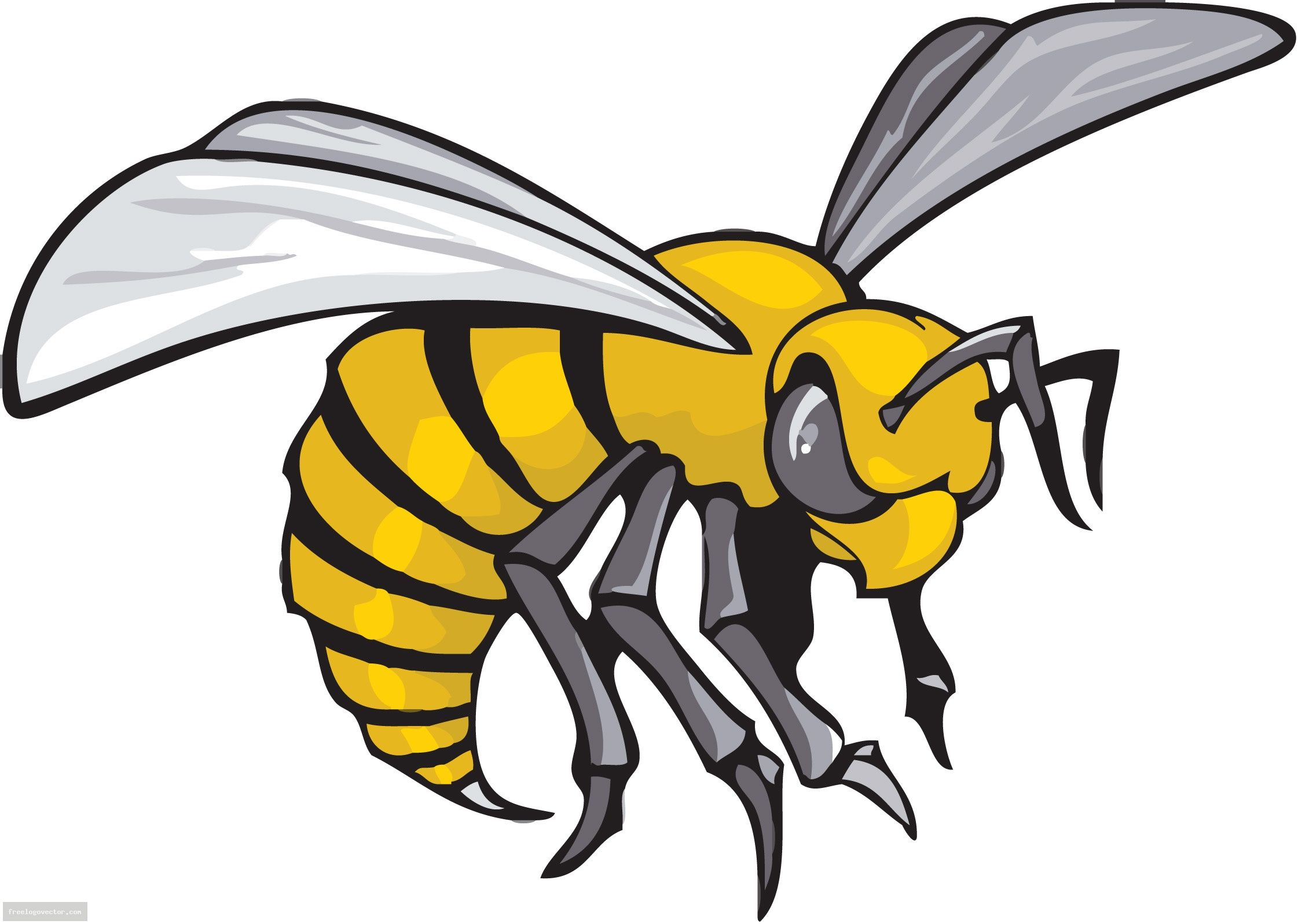 hornet 20clipart clipart library free clipart images favorite rh pinterest com Yellow Jackets Clip Art Moving Yellow Jackets Clip Art Moving