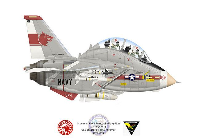 VF-1 Wolfpack F-14A | by blackheartart
