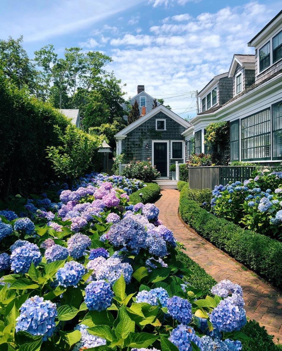 Garden House Beautiful Magazine Inspires Garden Lovers: Hydrangea Heaven: 16 Dreamy Gardens To Make You Fall In
