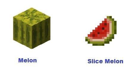 Minecraft Plantação De Melancia Melon Melon