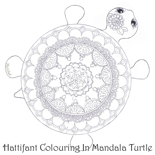 mandala turtle rare species