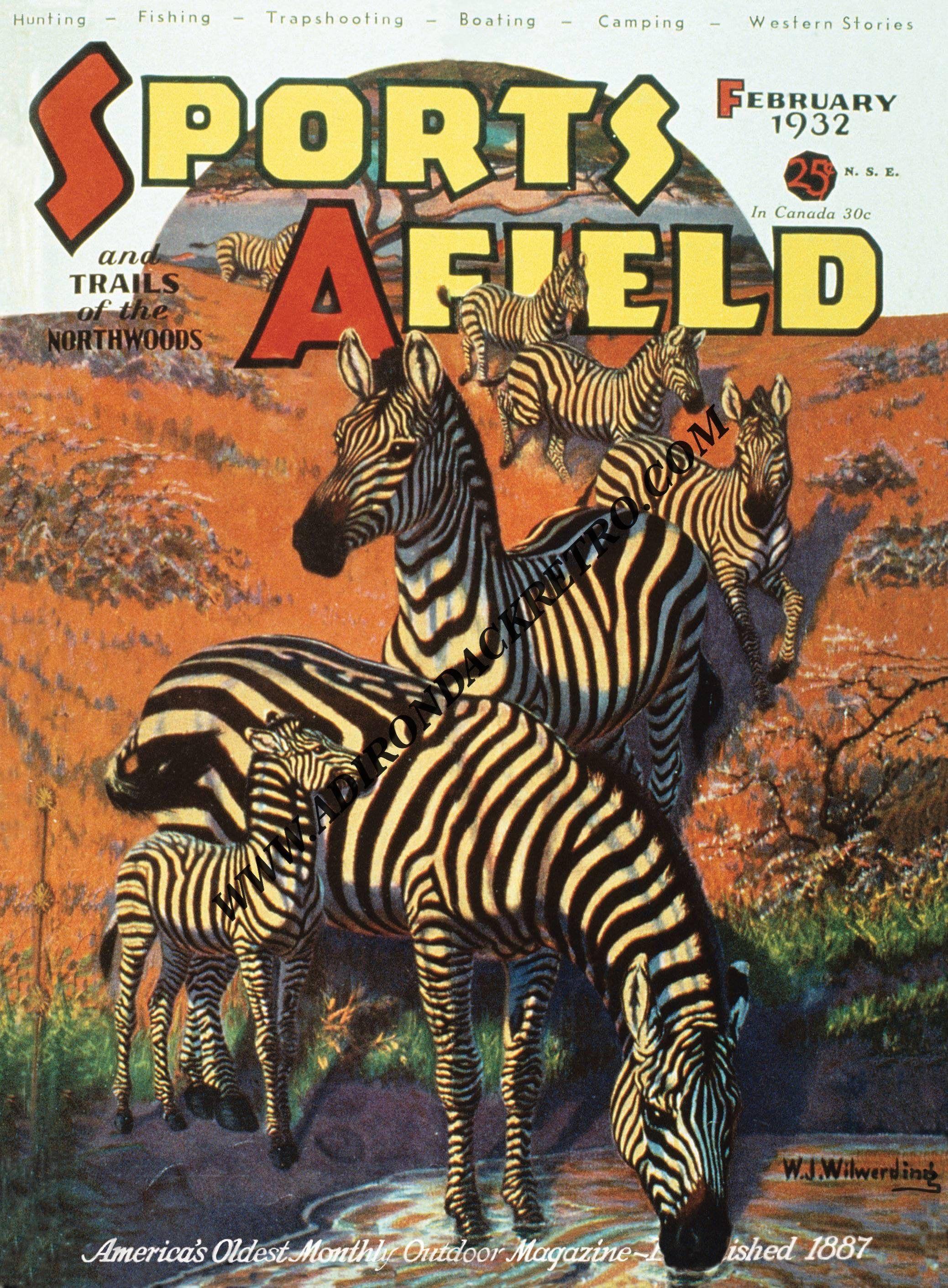 Zebra Print  Hunting Gift  Woodland Wall Art