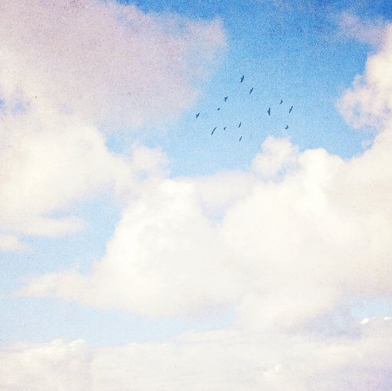 Sparrows in the Sky  Fine Art Photography  Clouds by HoneySparrow Photography