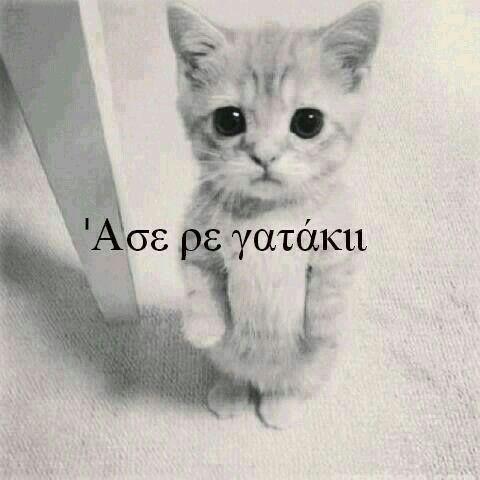 ♥♥♥♥♥♥♥♥♥♥♥♥♥