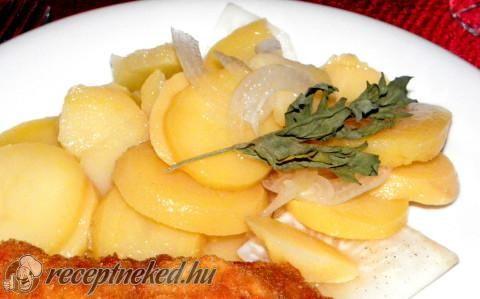 Zelleres krumplisaláta recept fotóval