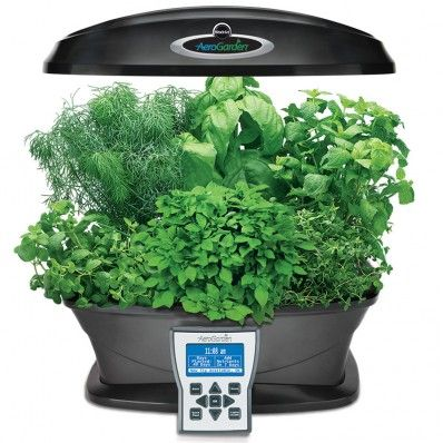 New Aerogarden Ultra I D Love This To Grow Herbs For 640 x 480