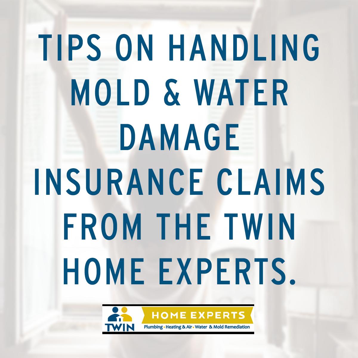 Tips On Handling Mold Water Damage Insurance Claims Water Damage Flood Damage Mold Remediation