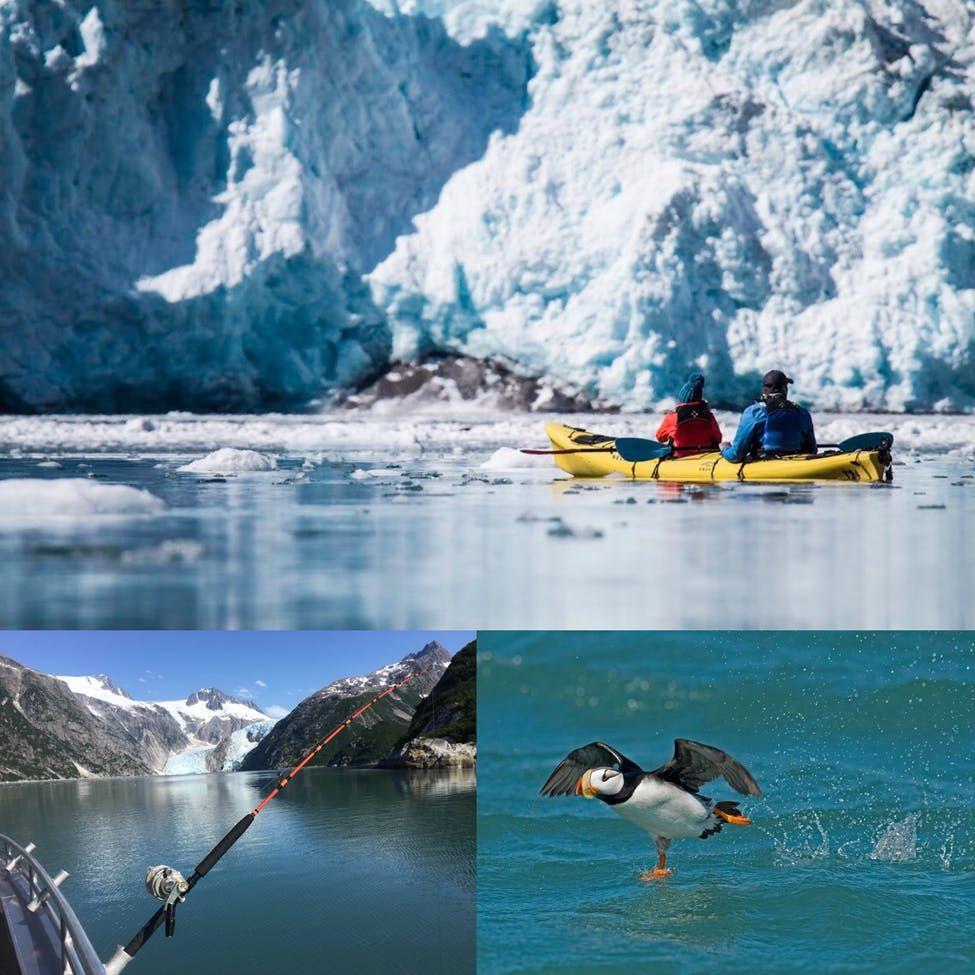 Best Of Alaska Trip Alaska Tours Alaska Travel Kayaking