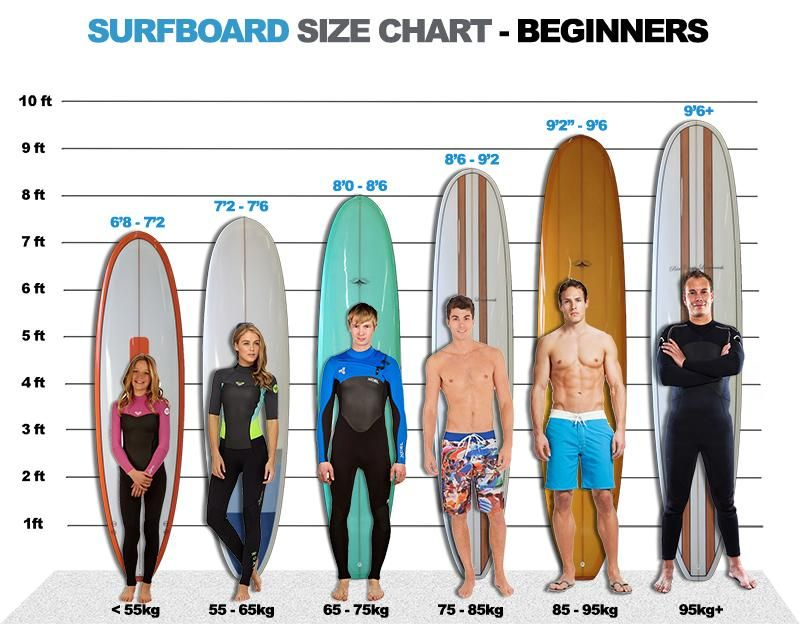 What Is The Best Surfboard for a Beginner? Surfing
