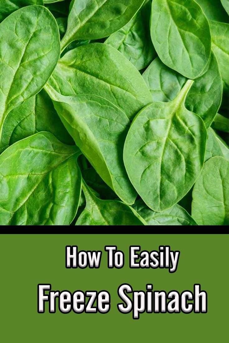 How to easily freeze spinach a great way to preserve