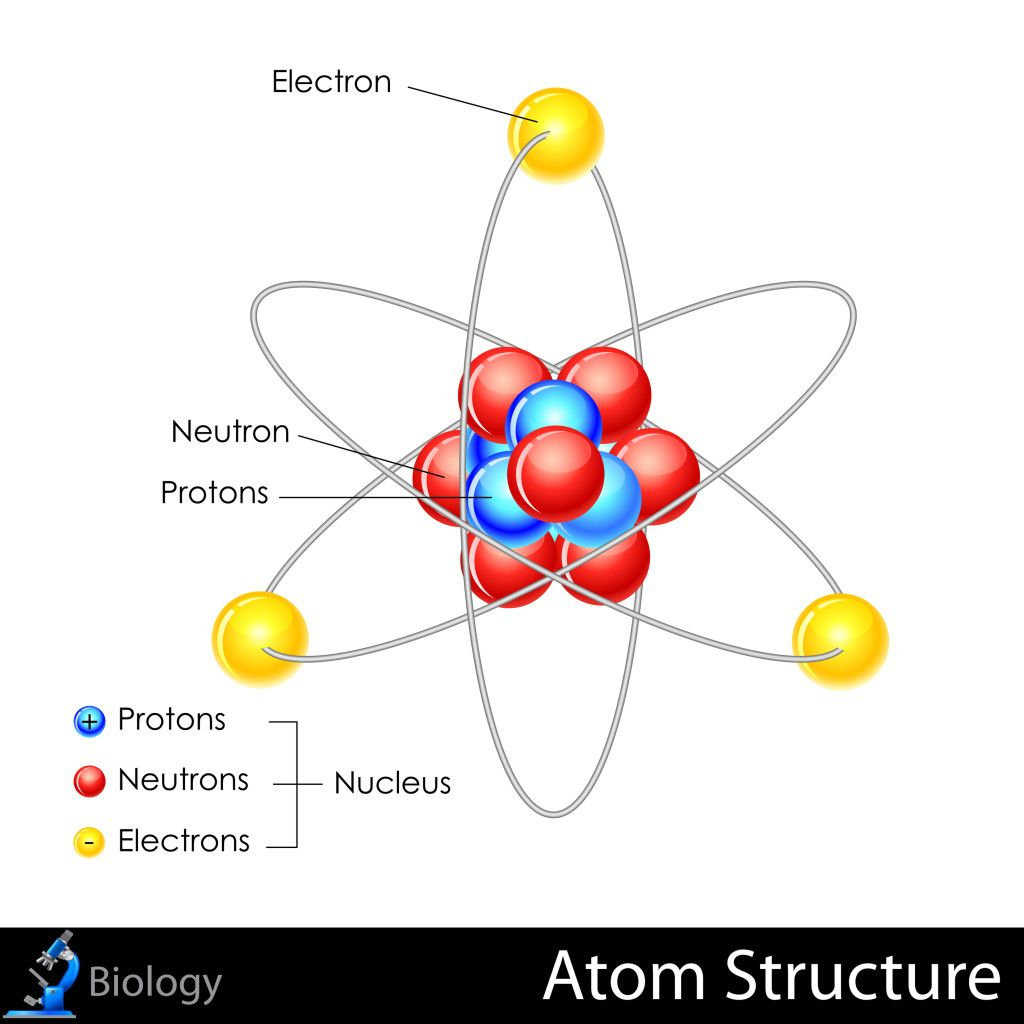 a discussion of atom The proton is located in the center (or nucleus) of an atom, each atom has at least one proton protons have a charge of +1, and a mass of approximately 1 atomic mass unit (amu) protons have a charge of +1, and a mass of approximately 1 atomic mass unit (amu.
