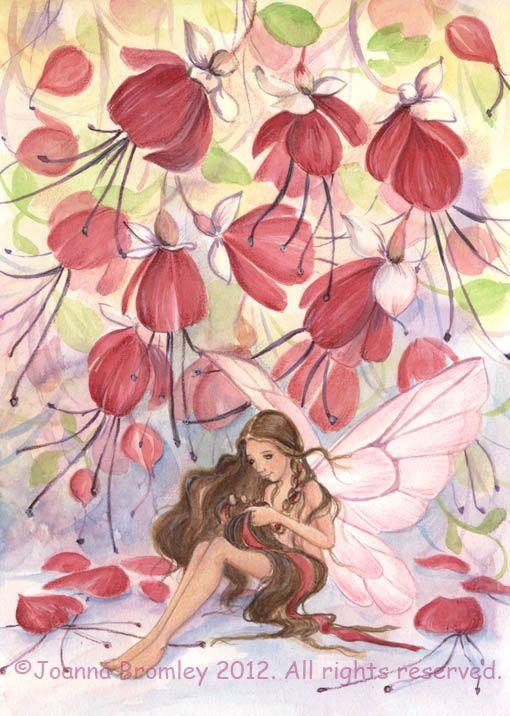 """Résultat de recherche d'images pour """"fuchsia fairy"""""""