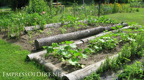 20+ Ideas For Your Home Veggie Garden | Gardens, Raised bed and ...