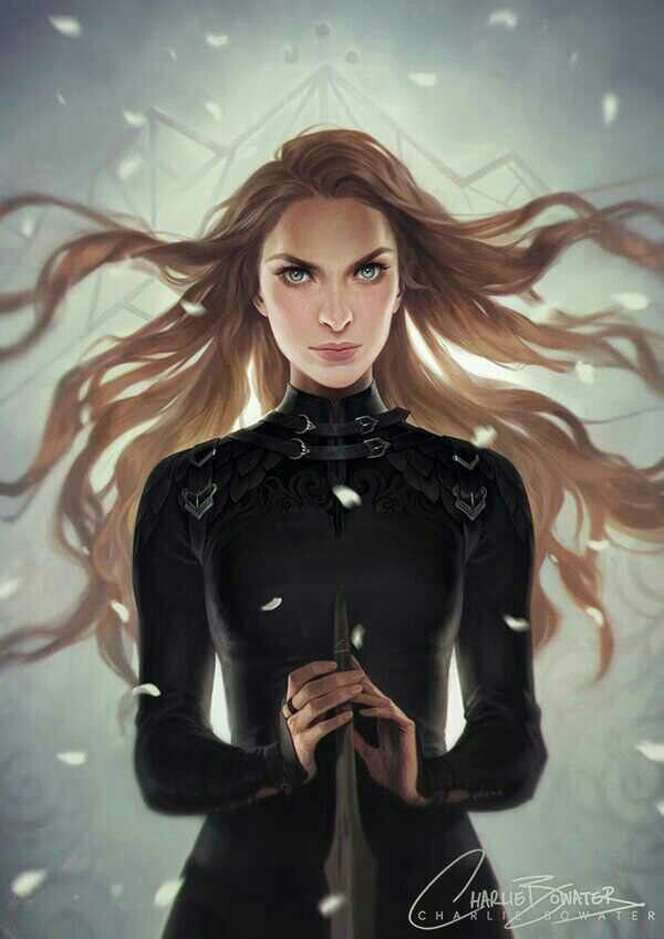 Feyre In Illyrian Fighting Leathers A Court Of Mist And Fury A