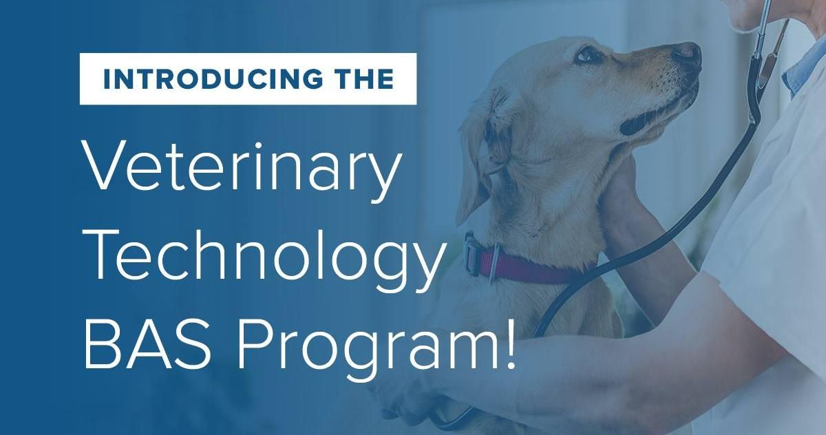 ANNOUNCING a NEW program! The Veterinary Technology