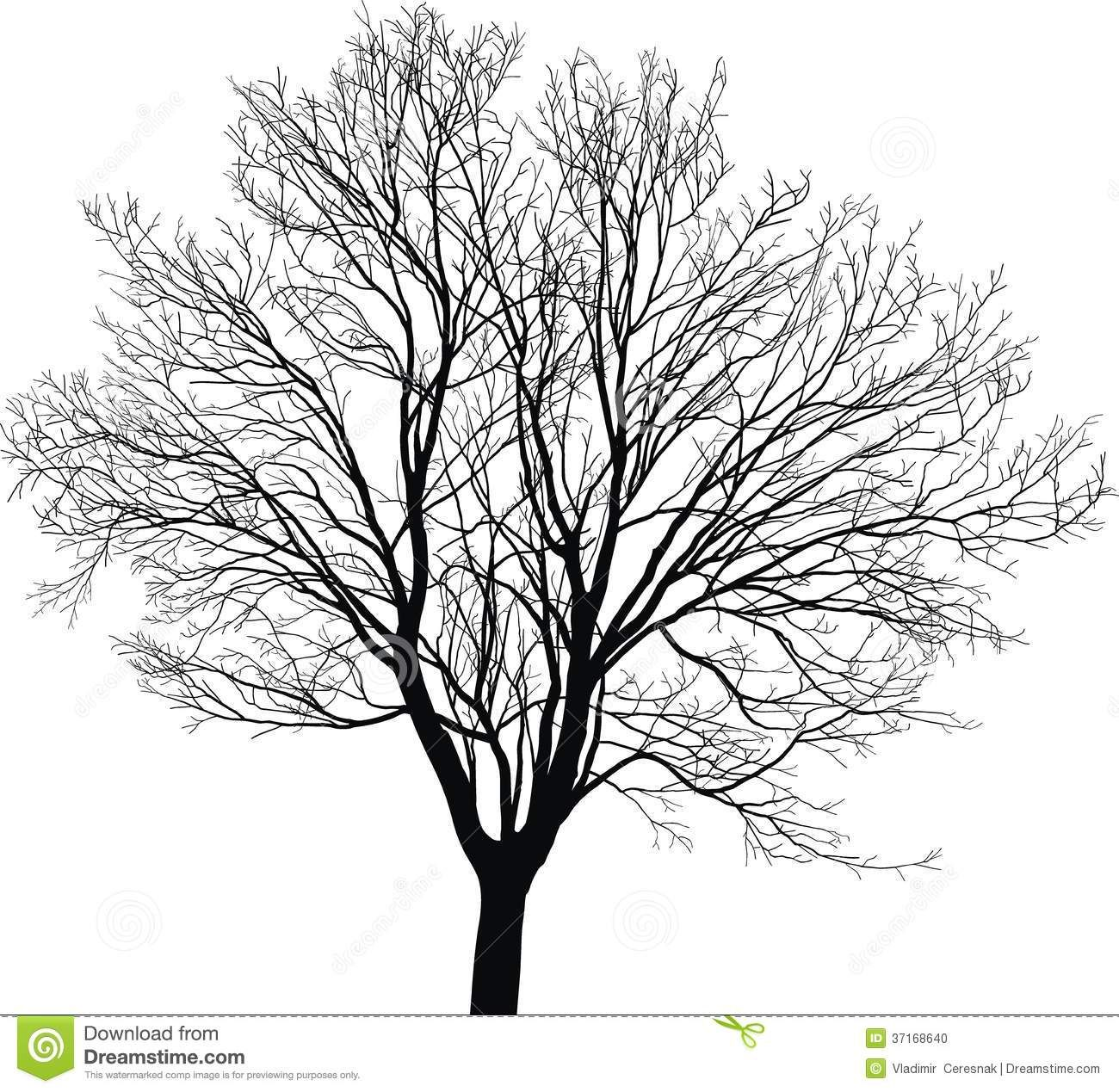 Black And White Drawings Of Trees