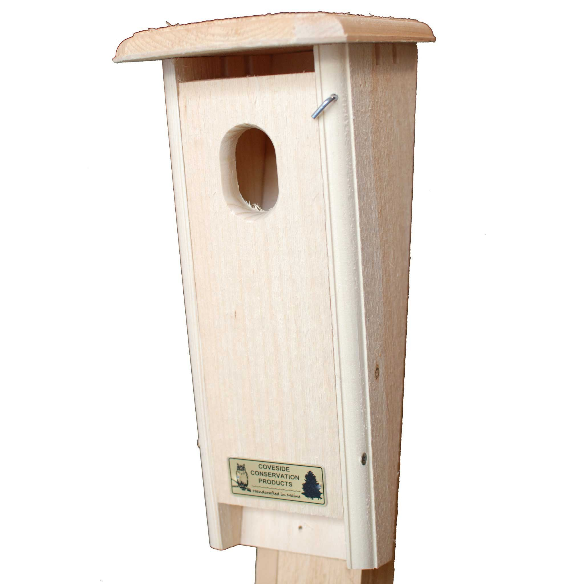 Protect Your Bluebirds From Cats And Other Predators The