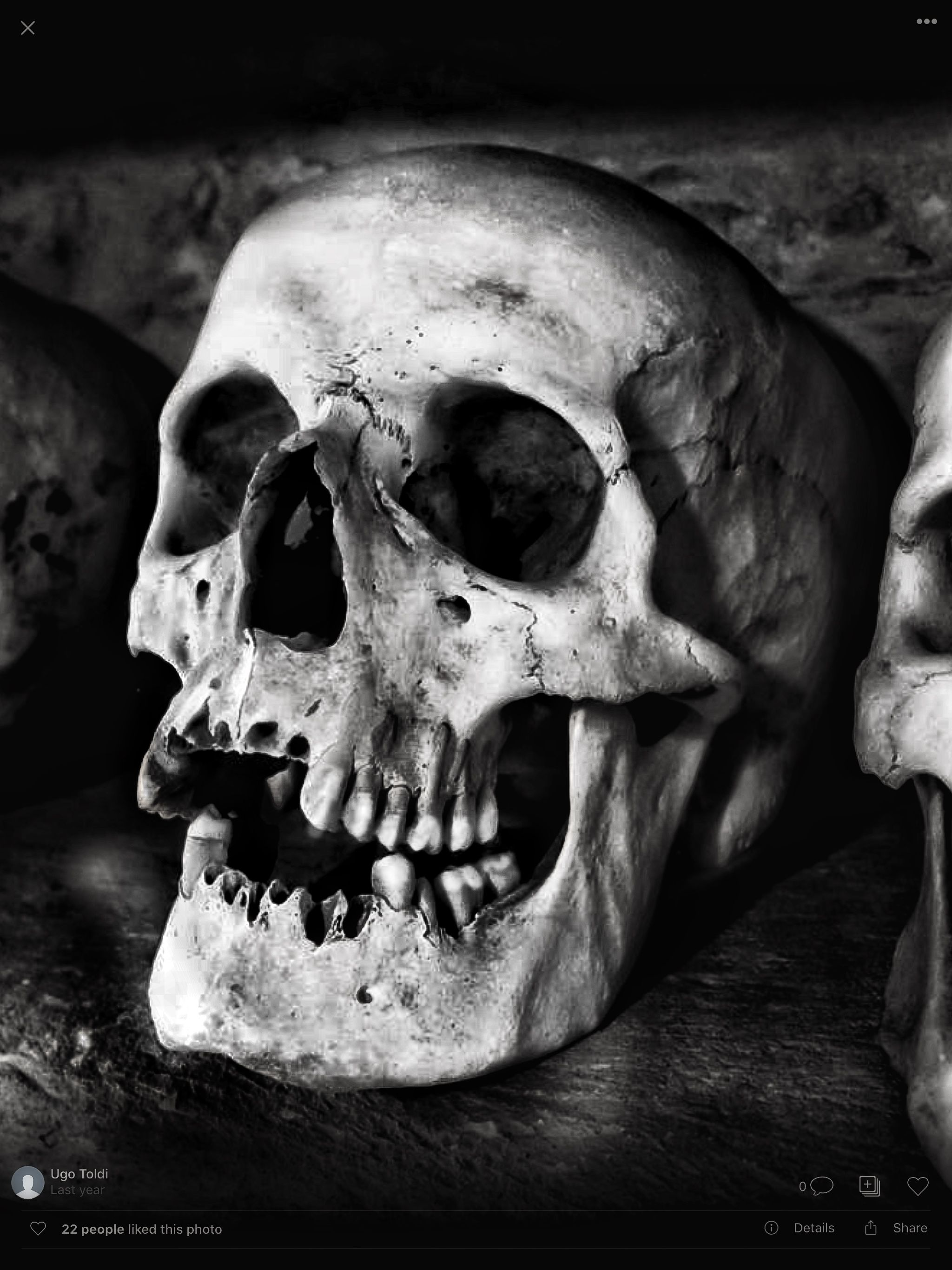 Human Jaw Tattoo: Pinned By Www.lamortclothing.com