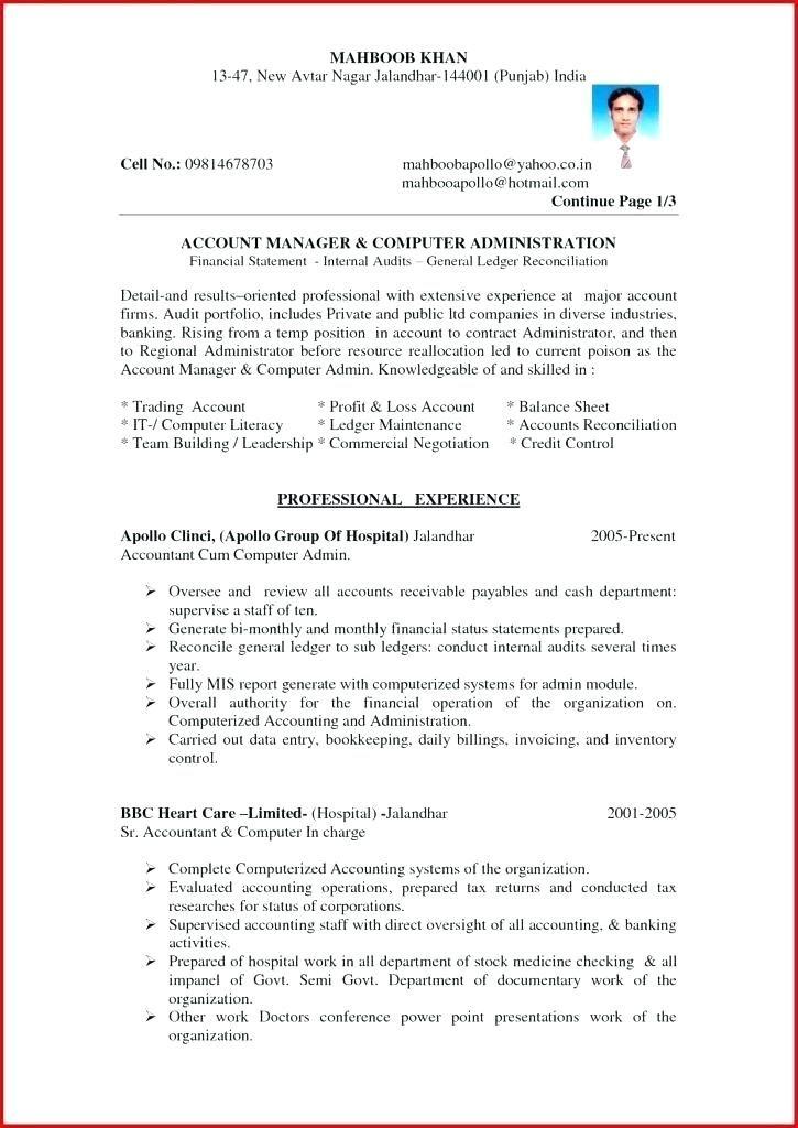 Resume format accountant resume format best free resume