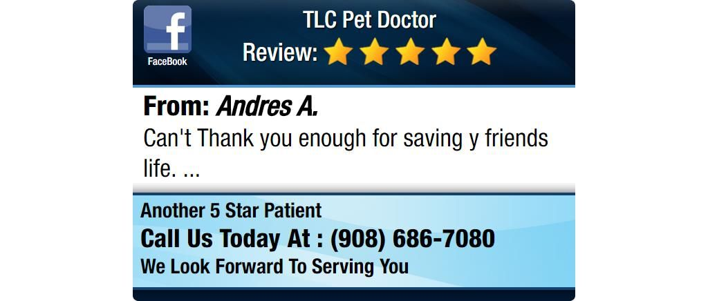 Can't Thank you enough for saving y friends life. Doctor
