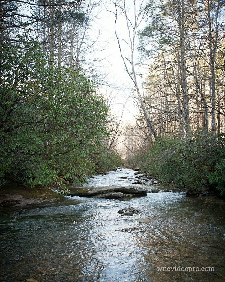 Looking Upstream In Pisgah National Forest Near Brevard North Carolina Brevard Nc Stream Pisgahnational Pisgah National Forest National Forest Instagram