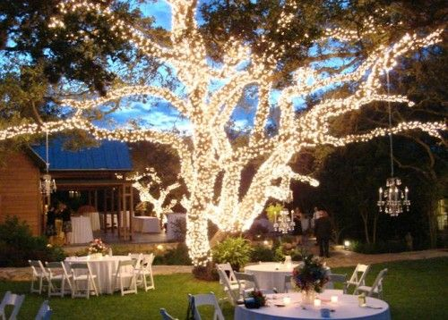 Elegant Backyard Wedding Decoration Idea Using Plugged In Lights And Trees Decorate With To Get This Look