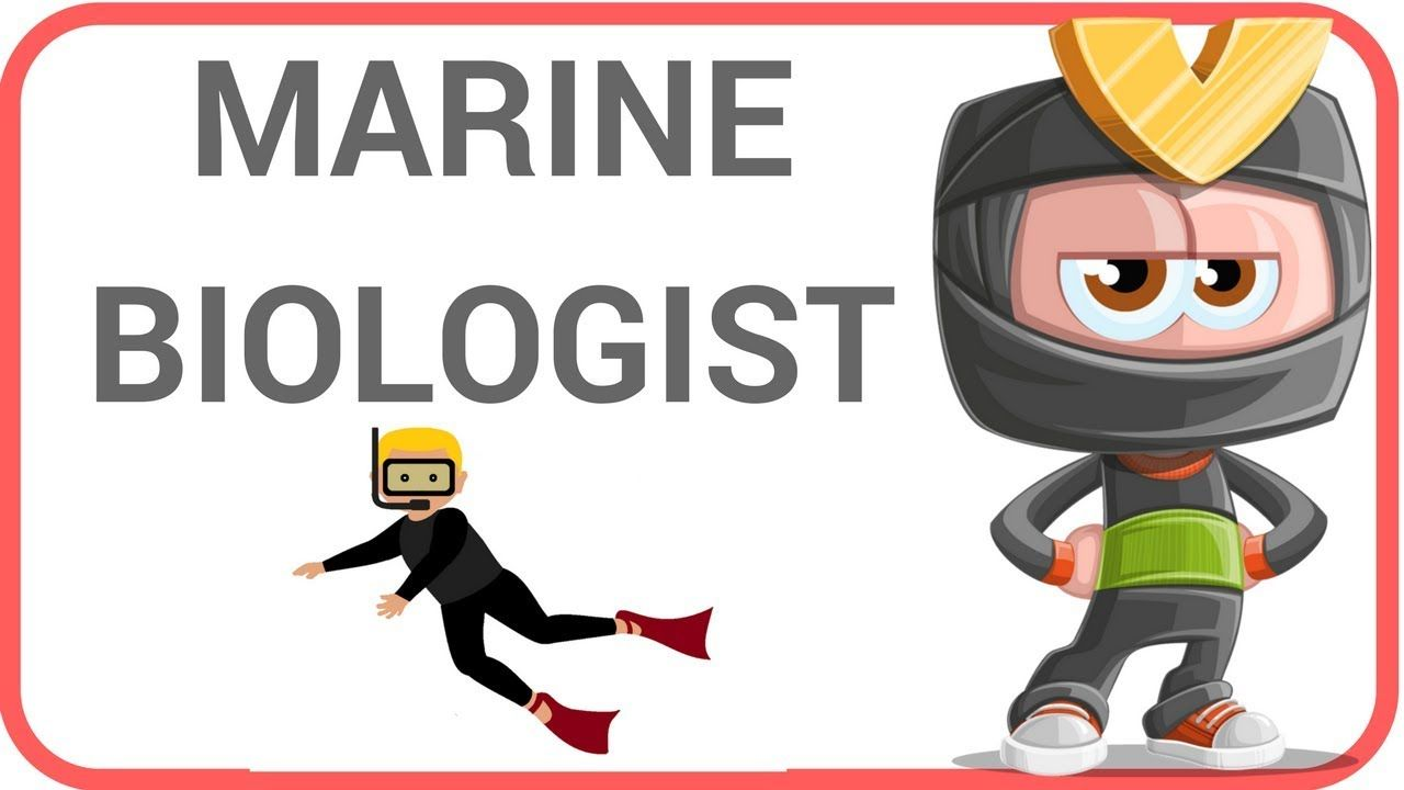 [Science Careers 5] Marine Biologist - Teaching English and ScienceScien...