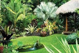 nombre tropical garden designjpg visitas 3617 tamao 162 kb